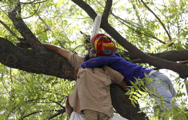 A supporter of Aam Aadmi (Common Man) Party (AAP) tries to rescue a farmer who hung himself from a tree during a rally organized by AAP, in New Delhi April 22, 2015. (Photo by Adnan Abidi/Reuters)
