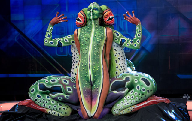 """Body painting artists perform a figure of a frog during """"El Hormiguero"""" TV Show at Vertice Studio on March 17, 2016 in Madrid, Spain. (Photo by Pablo Cuadra/WireImage)"""