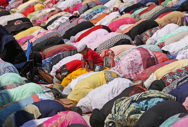 A boy sits on his mother's back as she and others Muslim women pray during the death anniversary of Hazrat Ali, son-in-law of Prophet Mohammad, at Hazratbal shrine during the holy month of Ramadan in Srinagar on May 27, 2019. (Photo by Danish Ismail/Reuters)