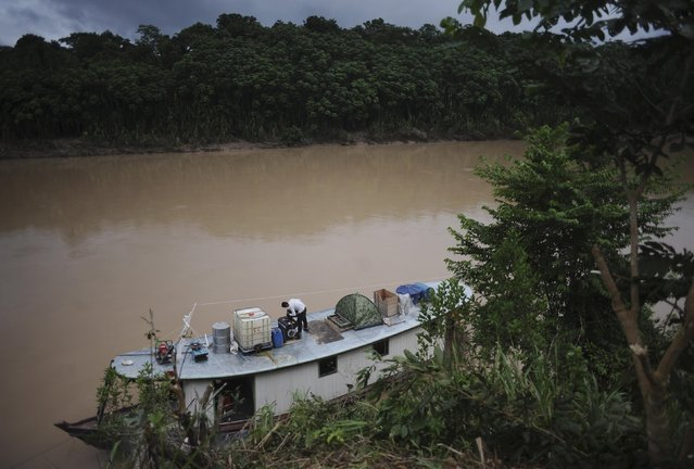 The boat in which Ashaninka Indian leaders travelled to inspect the limits of their territory is tied to the bank of the Envira river in Brazil's northwestern Acre state March 15, 2014. (Photo by Lunae Parracho/Reuters)