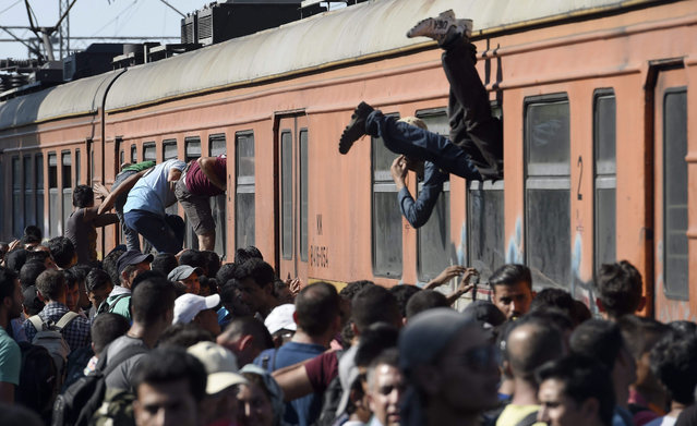 Migrants climb through the windows of a train bound for Serbia at the train station in Gevgelija, The Former Yugoslav Republic of Macedonia, 19 July 2015. Thousands of migrants who crossed Greece are on their way through Macedonia towards Serbia in order to access other European countries. (Photo by Georgi Licovski/EPA)