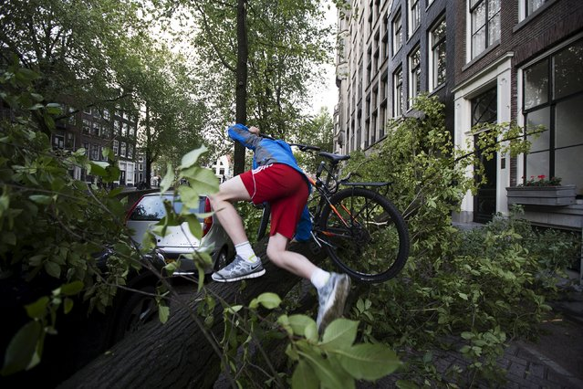 A cyclist climbs over a tree fallen atop a car after a heavy storm in Amsterdam, the Netherlands, July 25, 2015. One person was killed as the most severe July storm ever recorded in the Netherlands swept across the country on Saturday, delaying flights and disrupting road and rail traffic. (Photo by Cris Toala Olivares/Reuters)