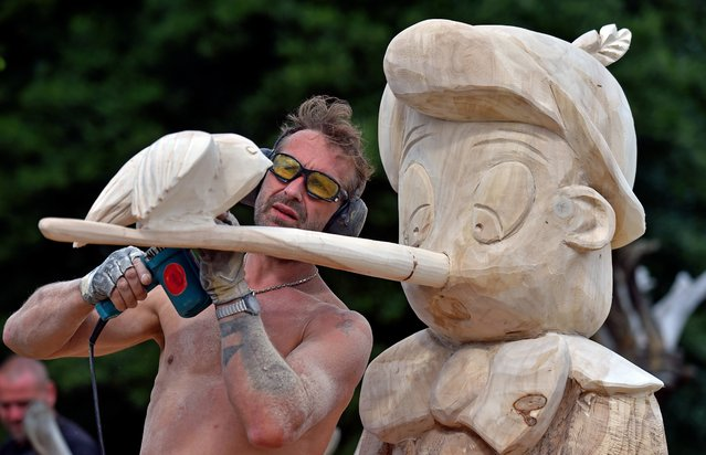 Dirk Hantschmann from Radeberg works on a wooden sculpture depicting Pinocchio during the 16th International Wood Sculpture Competition in Tornau, Germany, July 26, 2015. About 45 artists from Germany, England, Denmark and Lithuania have been working on their sculptures since 25 July 2015. (Photo by Hendrik Schmidt/EPA)