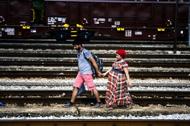 A Syrian migrant and his pregnant wife walk on train tracks towards the town of Gevgelija on July 27, 2015, on the Macedonian-Greek border, trying to catch a train to Serbia and the North European countries. The absurd situation forced migrants, fleeing conflict-torn and impoverished countries Africa, the Middle East and Asia, to either walk or more recently cycle for some 200 kilometres (124 miles) through Macedonia to get to the border with Serbia. (Photo by Dimitar Dilkoff/AFP Photo)