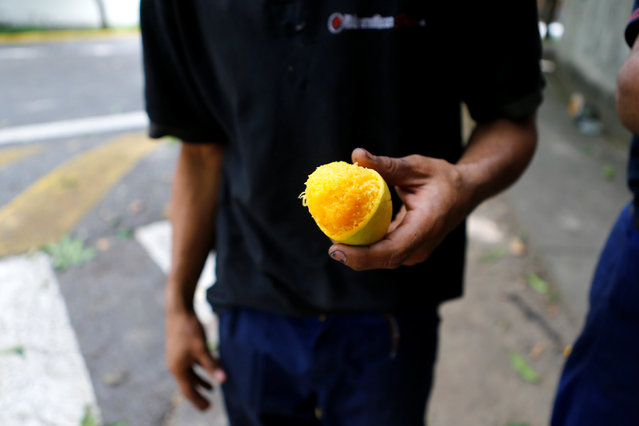 A worker holds a mango fruit after dislodging during their lunch break in Caracas, Venezuela, June 17 2016. (Photo by Ivan Alvarado/Reuters)