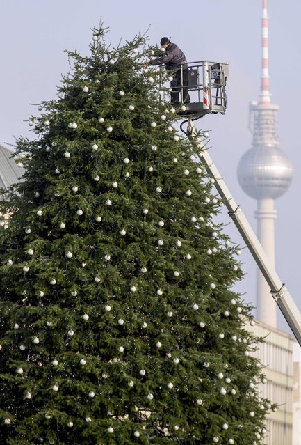 A worker decorates a Christmas tree at Pariser Platz in Berlin November 27, 2014. In background is the TV tower. (Photo by Hannibal Hanschke/Reuters)