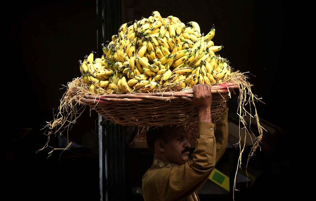 A Pakistani labourer carries a loaded basket of bananas at a fruit market in Lahore on October 19, 2015. (Photo by Arif Ali/AFP Photo)