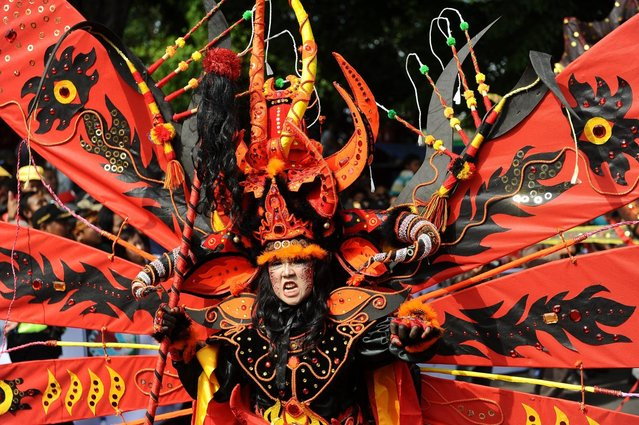 A model wearing Kebo Geni costume attends the Banyuwangi Ethno Carnival 2013 on September 7, 2013 in Banyuwangi, Indonesia. The central theme to the Banyuwangi Ethno Carnival III is The Legend of Kebo-keboan Blambangan and consists of three main parades which are Kebo Geni, Kebo Tirto Bayu, Kebo Bumi, and comprises more than 250 performers. (Photo by Robertus Pudyanto/Getty Images)
