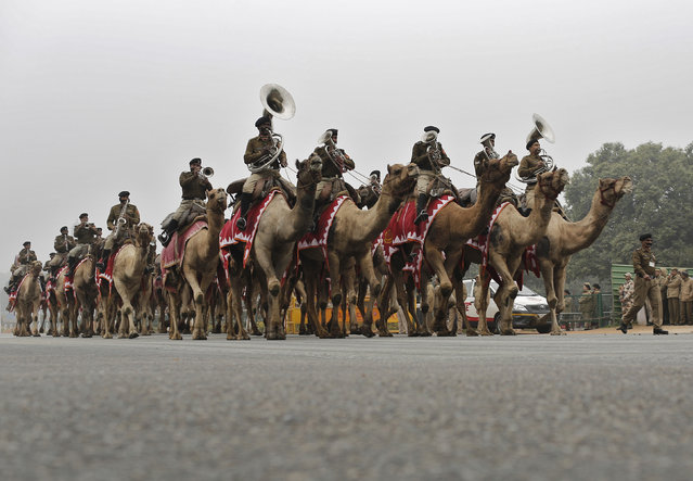 Members of the Indian Border Security Force (BSF) band ride their camels as they take part in the rehearsal for the Republic Day parade in New Delhi, India, January 20, 2016. India celebrates its annual Republic Day on January 26. (Photo by Anindito Mukherjee/Reuters)