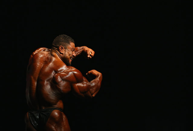 Roelly Winklaar of the Netherlands poses during the Arnold Classic Australia at The Melbourne Convention and Exhibition Centre on March 14, 2015 in Melbourne, Australia. (Photo by Robert Cianflone/Getty Images)