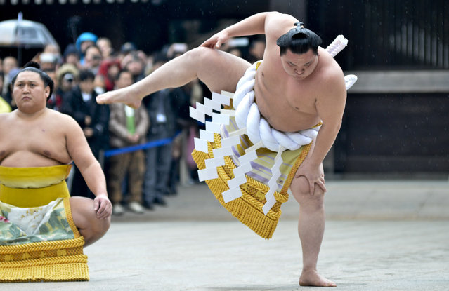 "Sumo Grand Champion Hakuho Sho (R) performs ""Dohyo-iri"" (ring purification ritual) during Dezuiri ceremony at the Meiji Shrine on January 8, 2014 in Tokyo, Japan. It is a custom for Sumo Grand Champions to celebrate the new year by performing the ritual at the Meiji Jingu Shrine. (Photo by Keith Tsuji/Getty Images)"