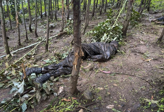 """The dead body of an unidentified man wearing a military uniform lies on the ground amongst trees near the village of Chenna Teklehaymanot, in the Amhara region of northern Ethiopia Thursday, September 9, 2021. At the scene of one of the deadliest battles of Ethiopia's 10-month Tigray conflict, witness accounts reflected the blurring line between combatant and civilian after the federal government urged all capable citizens to stop Tigray forces """"once and for all"""". (Photo by AP Photo/Stringer)"""