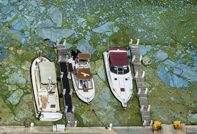 In this June 29, 2016 file photo, boats docked at Central Marine in Stuart, Fla., are surrounded by blue green algae. The 153-mile-long Indian River Lagoon has been plagued by harmful algae blooms. Water quality testing data analyzed by the AP showed the average phosphorous level – a byproduct of fertilizers and human waste that algae thrive on, rose nearly 75 percent between 2000 and 2016. (Photo by Greg Lovett/The Palm Beach Post via AP Photo)
