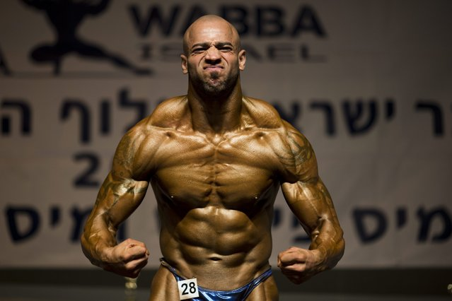 Israeli-Arab contestant Mohammed Ammar flexes his muscles and strikes a pose on stage as Israelis and Arabs perform during the Israel body building contest in Nesher near Haifa, Israel, 02 June 2016. (Photo by Abir Sultan/EPA)