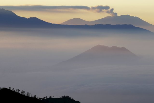 Mount Raung (top) spews ash into the air, as seen from Mount Bromo in Indonesia's East Java province, July 31, 2015. (Photo by Reuters/Beawiharta)