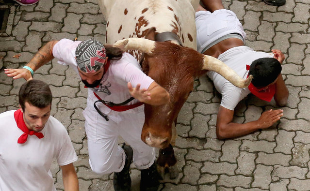 """A steer from the Ranch of Torrestrella runs above a runner entering the bullring during the second day of the San Fermin Running Of The Bulls festival, on July 7, 2014 in Pamplona, Spain. The annual Fiesta de San Fermin, made famous by the 1926 novel of US writer Ernest Hemmingway """"The Sun Also Rises"""", involves the running of the bulls through the historic heart of Pamplona. (Photo by Christopher Furlong/Getty Images)"""