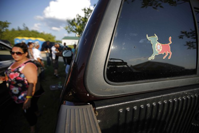 """A decal of a fighting bull in the colours of the Portuguese flag is seen on a truck during the intermission at an Azorean """"tourada a corda"""" (bullfight by rope) in Brampton, Ontario August 15, 2015. (Photo by Chris Helgren/Reuters)"""