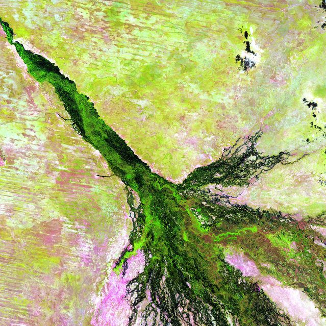 Okavango River, Botswana. Like a watercolor in which a brushstroke of dark green has bled into a damp spot on the paper, southern Africa's Okavango River spreads across the pale, parched landscape of northern Botswana to become the lush Okavango Delta. The delta forms where the river empties into a basin in the Kalahari Desert, creating a maze of lagoons, channels and islands where vegetation flourishes, even in the dry season, and wildlife abounds. Image taken by Landsat 5 on April 27, 2009. (Photo by USGS/NASA)