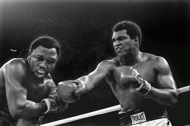 Spray flies from the head of challenger Joe Frazier, left, as heavyweight champion Muhammad Ali connects with a right in the ninth round of their title fight in Manila, Philippines, October 1, 1975. Ali won the fight on a decision to retain the title. (Photo by Mitsunori Chigita/AP Photo)
