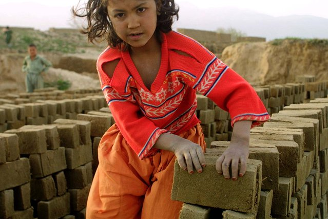 An Afghan girl makes a pile of unbaked bricks near the road passing through the Shamali Plains, about 10 kilometers (6 miles), west of Bagram, Afghanistan, Wednesay April 9, 2003. Children assist parents in their job to supplement family income. (Photo by Gurinder Osan/AP Photo)