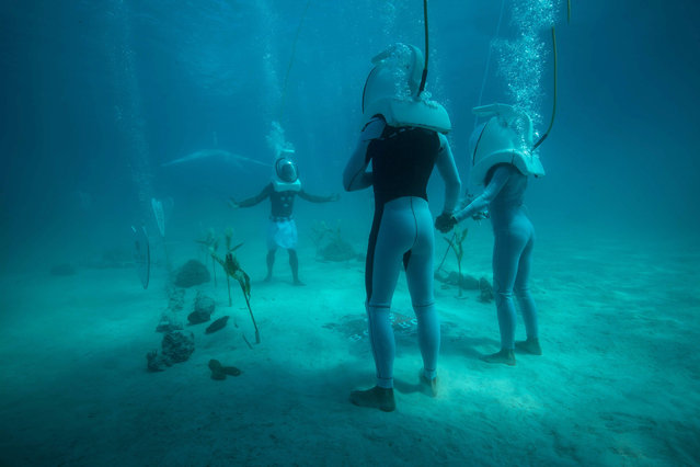 In a picture taken with an underwater camera, a couple stands in front of a Polynesian priest during their underwater wedding ceremony on October 25, 2014 in Bora-Bora, in French Polynesia. The ceremony lasts twenty minutes and costs around 2700 euros. (Photo by Ben Thouard/AFP Photo)