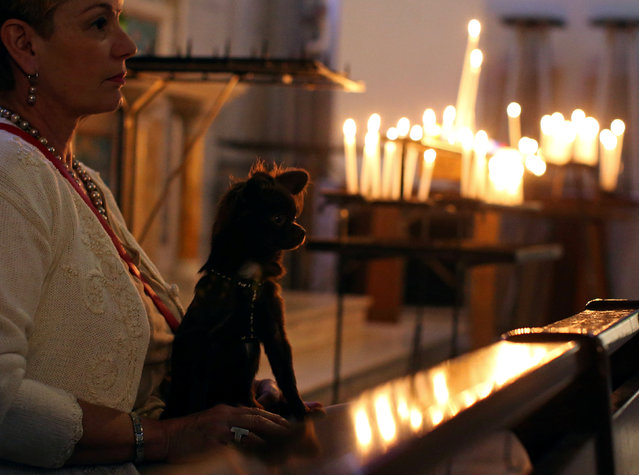 Owners and their pets attend a mass at the Saint Pierre D'Arene church to honour the feast of Saint Francis of Assisi, the patron saint of animals and the environment, in Nice, France October 2, 2016. (Photo by Eric Gaillard/Reuters)