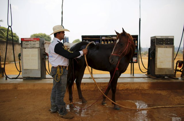Amilton cools off his horse at a petrol station in Rio Pardo next to Bom Futuro National Forest, in the district of Porto Velho, Rondonia State, Brazil, August 30, 2015. (Photo by Nacho Doce/Reuters)