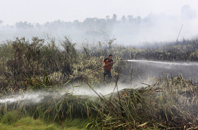 In this Thursday, September 17, 2015 file photo, a fireman sprays water to extinguish wildfire on a peatland field in Ogan Ilir, South Sumatra, Indonesia. Indonesian forest fires that choked a swath of Southeast Asia with a smoky haze for weeks in 2015 may have caused more than 100,000 premature deaths, according to new research that will add to pressure on Indonesia's government to tackle the annual crisis. (Photo by Tatan Syuflana/AP Photo)