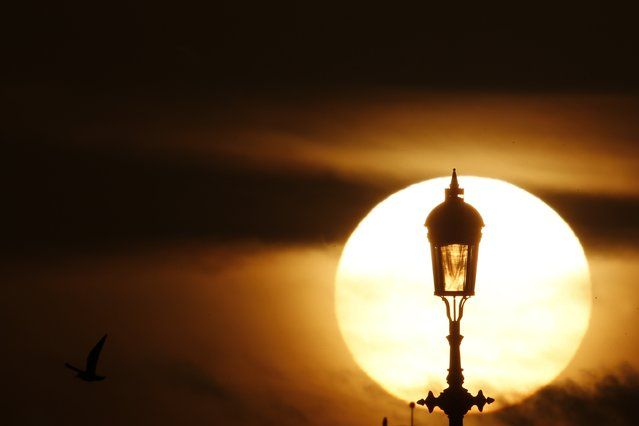 The sun sets behind a lamp in London January 8, 2015. (Photo by Stefan Wermuth/Reuters)