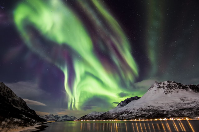 """""""Cosmic Dance"""". The long arctic nights are brighten up by the fire in the sky of the northern lights. During my trip last winter to Norway I had the incredible luck to capture some surreal forms of the aurora borealis. In this photo a band is exploding into a multi colored corona over the Lyngen Alps. Location: Lyngen Fjord, Norway. (Photo and caption by Claus Possberg/National Geographic Traveler Photo Contest)"""