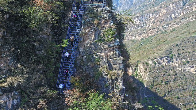 People climb on the newly-built metal ladder with hand railings to Ahtuler village on a cliff on November 11, 2016 in Zhaojue county, China. There were 17 vine ladders on the 800-meter-up way between the village on the top of a mountain and the valley beneath it. New metal ladders were built recently to reduce the risk of the villagers, especially of the school children, after media coverage. (Photo by Feature China/Barcroft Images)