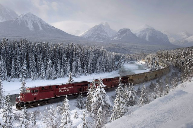A Canadian Pacific freight train travels around Morant's Curve near Baker Creek, Alberta on Monday, Dec. 1, 2014. (Photo by Frank Gunn/AP Photo/The Canadian Press)