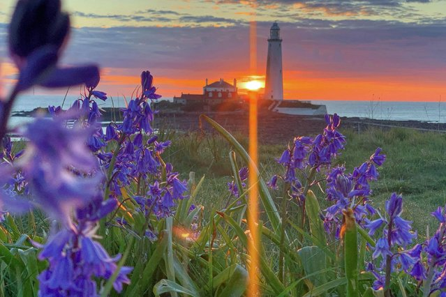 Sunrise over St Mary's lighthouse north of Whitley Bay on the coast of north east England on Wednesday, May 19, 2021. (Photo by Owen Humphreys/PA Images via Getty Images)