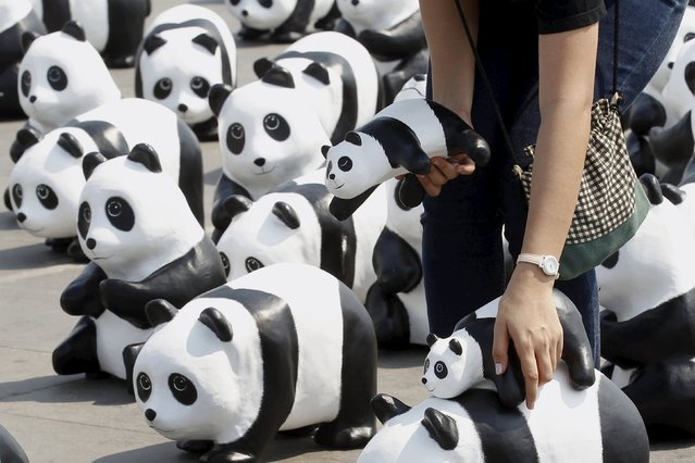 A volunteer arranges panda sculptures ahead of an exhibition by French artist Paulo Grangeon in Bangkok, Thailand, March 4, 2016. (Photo by Chaiwat Subprasom/Reuters)