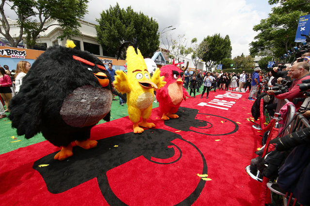"""Bomb, Chuck and Red seen at Columbia Pictures and Rovio Animations Premiere of """"The Angry Birds Movie"""" at Regency Village Theatre on Saturday, May 7, 2016, in Los Angeles. (Photo by Eric Charbonneau/Invision for Sony Pictures/AP Images)"""