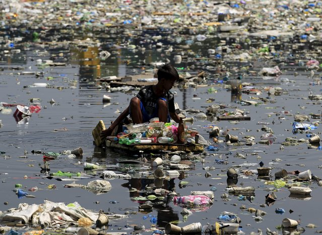A scavenger wades through a polluted river using a makeshift raft made of styrofoam to collect reusable items at Capulong Tondo, metro Manila, Philippines April 22, 2016. (Photo by Romeo Ranoco/Reuters)