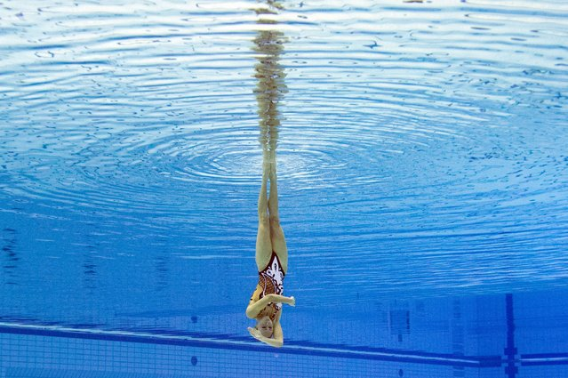 This picture taken with an underwater camera shows Bronze medalist Ukraine Anna Voloshyna competing in the synchronised swimming solo free final event at the 32nd LEN European swimming championships on August 17, 2014 in Berlin. (Photo by Damien Meyer/AFP Photo)