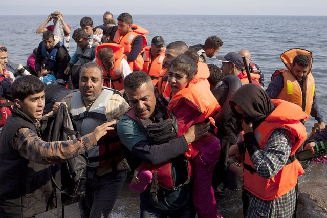 """Syrian refugees jump off a dinghy as they arrive on the Greek island of Lesbos September 3, 2015. The International Organization for Migration (IOM) says 1,500-2,000 are taking the route through Greece, Macedonia and Serbia to Hungary every day and that there is """"a real possibility"""" the flow could rise to 3,000 daily. (Photo by Dimitris Michalakis/Reuters)"""