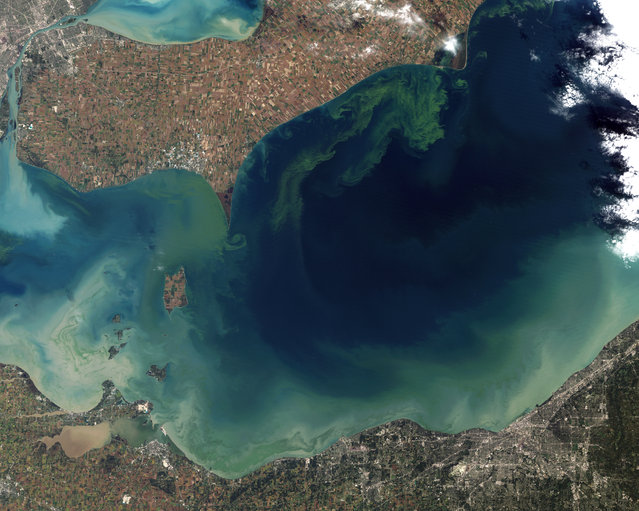 Lake Erie. Though Lake Erie looks beautiful in this image, the green swirls in the water are evidence of the worst toxic algae bloom the lake has suffered in decades. Image taken by Landsat 5 on October 5, 2011. (Photo by USGS/NASA)