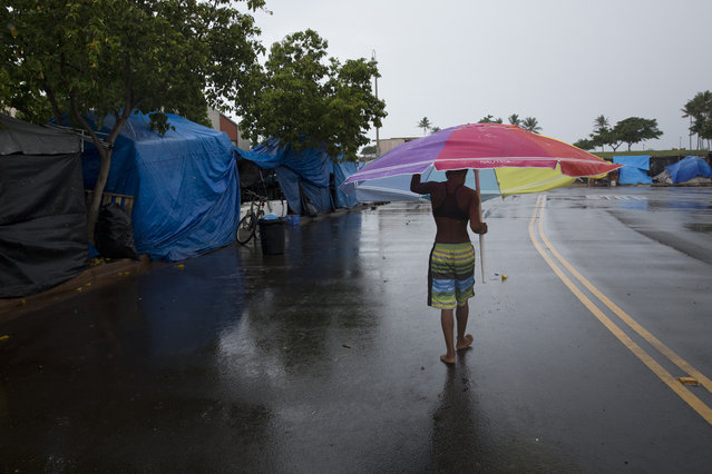 In this Tuesday, August 25, 2015 photo, a girl uses a large umbrella to take cover from the rain while walking through a homeless encampment in the Kakaako district of Honolulu. The encampment, which included 180 tents and more than 300 people, swelled after the City of Honolulu started banning sitting and lying down on sidewalks in 2014. (Photo by Jae C. Hong/AP Photo)