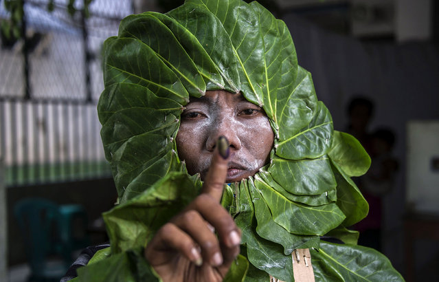 An Indonesian man dressed up as a plant to increase peoples' awareness of the environment shows his inked finger after voting in the country's first nationwide regional elections, in Surabaya on December 9, 2015. About 100 million voters were eligible to elect 269 provincial governors, district heads and city mayors, with polls taking place in around half the local administrations of the world's third-biggest democracy. (Photo by Juni Kriswanto/AFP Photo)