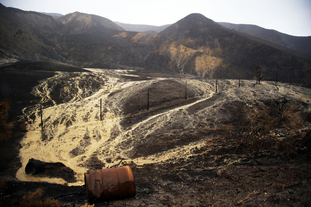 Mud and debris flow down hillsides burned in a recent brush fire after heavy rain from the first in a series of El Nino storms that passed over the area above Solimar Beach in Ventura, Calif., Wednesday January 6, 2016. (Photo by Joel Angel Juárez/AP Photo)