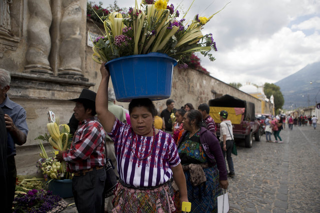 A Mayan vendor balances on her head a container filled with decorative palm fronds as she waits for parishioners attending the traditional Palm Sunday Mass, outside the San Francisco Catholic Church, in Antigua, Guatemala, Sunday, March 29, 2015. The fronds symbolize how worshippers greeted Jesus Christ over 2,000 years ago as he triumphantly returned to Jerusalem, marking the start of Holy Week ahead of Easter. (Photo by Moises Castillo/AP Photo)