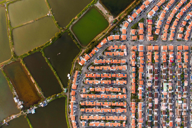 This aerial photo taken on December 4, 2018 shows farms next to a residential estate in Hong Kong. (Photo by Dale De La Rey/AFP Photo)