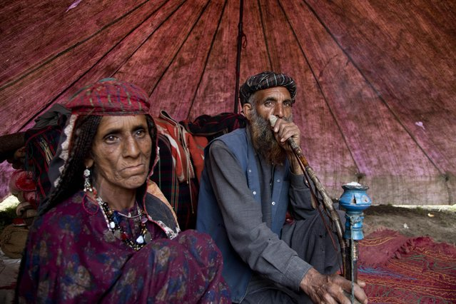 Gul Khan, a Bakarwal nomad, smokes a hookah as his wife Noora Khan sits beside him inside their tent on the outskirts of Srinagar, Indian controlled Kashmir, Tuesday, April 21, 2015. (Photo by Dar Yasin/AP Photo)