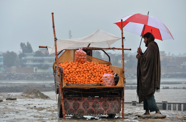 In this photo taken on March 11, 2019 an Afghan street vendor selling oranges waits for customers on a rainy day on the roadside in Jalalabad. (Photo by Noorullah Shirzada/AFP Photo)