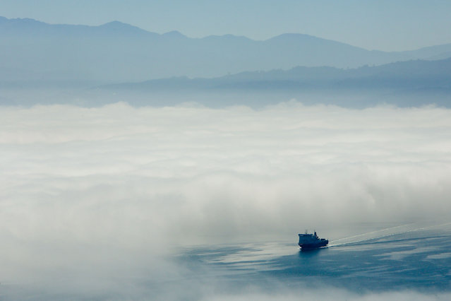 The Bluebridge ferry sails out of the fog on Wellington Harbour on February 20, 2014 in Wellington, New Zealand. (Photo by Hagen Hopkins/Getty Images)