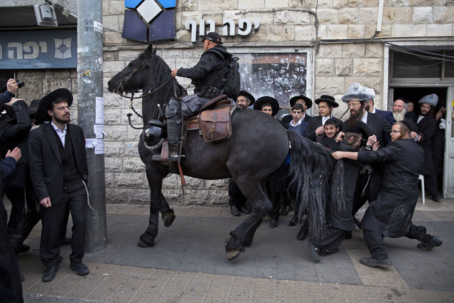 An ultra-Orthodox Jew pulls Israeli police horse's tail horse during a protest against Israeli army conscription, in Jerusalem, Wednesday, March 15 , 2017. Ultra-Orthodox Jews have for years been exempt from military service, which is compulsory for Jewish Israelis. The arrangement has caused widespread resentment among Israel's secular majority. The ultra-Orthodox claim the military will expose their youth to secularism and undermine their devout lifestyle. (Photo by Oded Balilty/AP Photo)