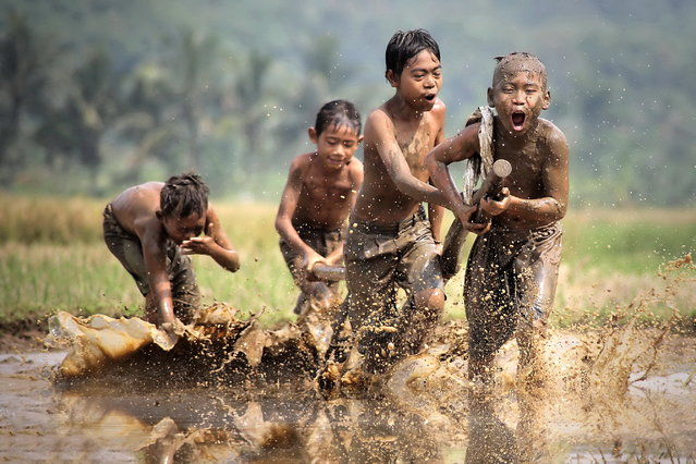 """The race in the mud"". The Children's play races in the muddy rice paddies. Photo location: Rumpin, Bogor, Indonesia. (Photo and caption by Dody Kusuma/National Geographic Photo Contest)"
