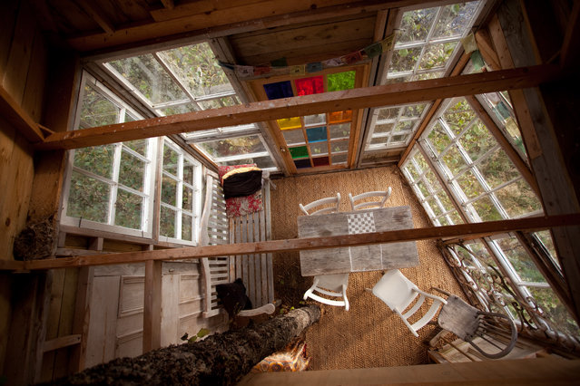 Drynachan Lodge Treehouse, Cawdor, Scotland. Salvaged windows, thoughtfully arranged, make up the entire west end of the small space. (Photo by Pete Nelson)